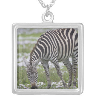 Africa. Tanzania. Zebra mother and colt at Square Pendant Necklace
