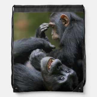 Africa, Uganda, Kibale Forest Reserve, Juvenile 2 Drawstring Bag