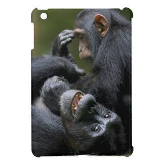 Africa, Uganda, Kibale Forest Reserve, Juvenile 2 iPad Mini Cover