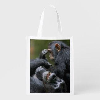 Africa, Uganda, Kibale Forest Reserve, Juvenile 2 Grocery Bag