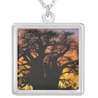 African baobab tree, Adansonia digitata, Square Pendant Necklace