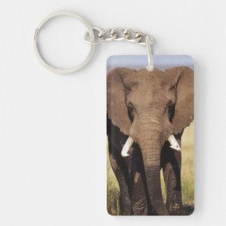African Bush Elephant Double-Sided Rectangular Acrylic Key Ring