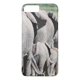 African Bush Elephant (Loxodonta Africana) 4 iPhone 7 Plus Case