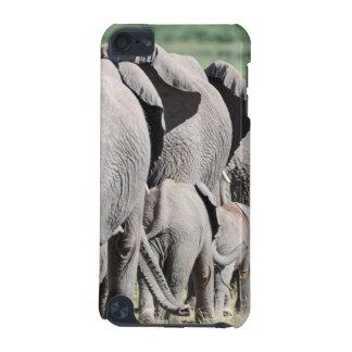 African Bush Elephant (Loxodonta Africana) 4 iPod Touch 5G Cases