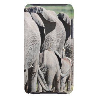 African Bush Elephant (Loxodonta Africana) 4 iPod Touch Case-Mate Case
