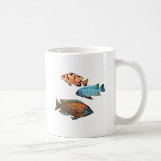 African Cichlids Coffee Mug