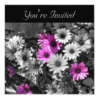 """African Daisies Elegant Black Floral Invitation 5.25"""" Square Invitation Card"""