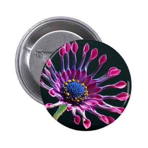 African Daisy Button