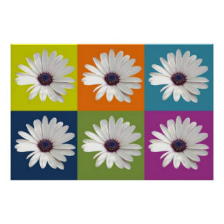 African Daisy Collage Poster