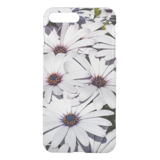 African Daisy Flowers iPhone 7 Plus Case