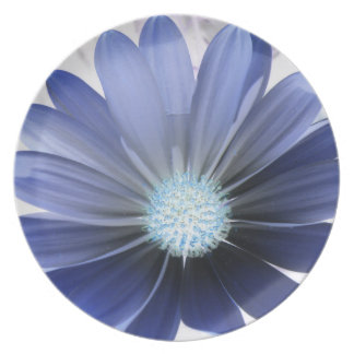 African Daisy Glowing Blue Plate