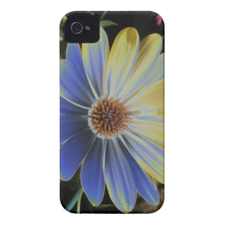African Daisy Lapis and Gold Blackberry Bold Case
