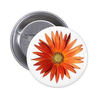African Daisy Pinback Button