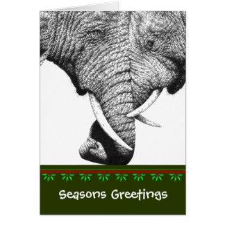 African Elephant Christmas Card