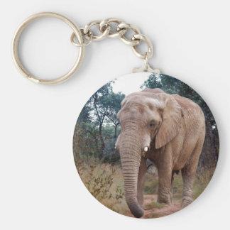 African elephant in the bush key chain