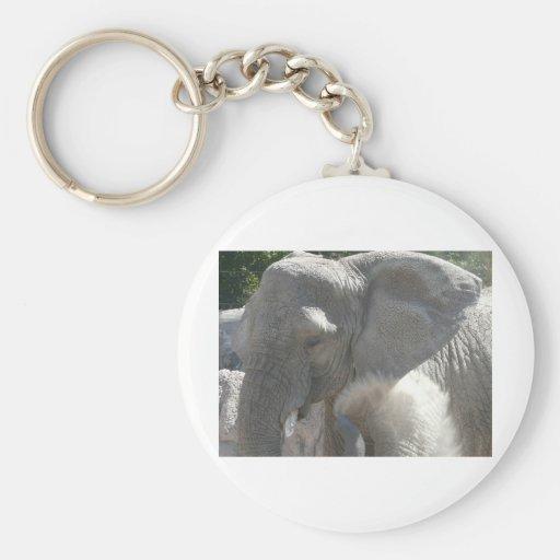 african elephant keychains