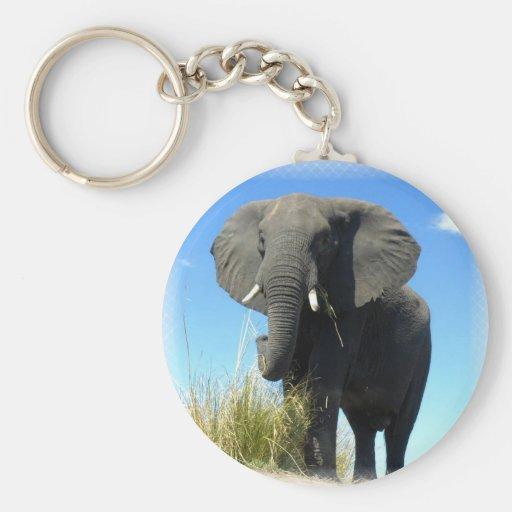 African Elephant Keychain