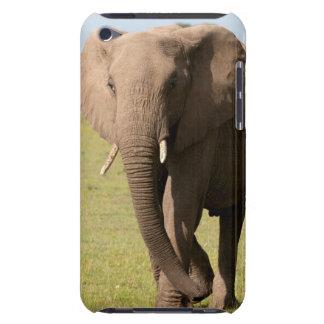 African Elephant (Loxodonta Africana), Maasai Case-Mate iPod Touch Case