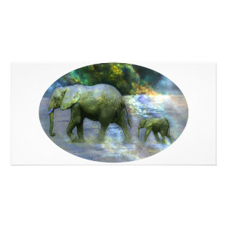 African Elephant Photo Card Template