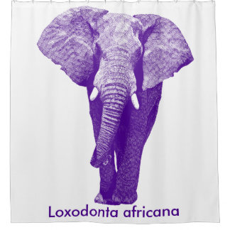 African Elephant Walking: Purple/Grape Shower Curtain