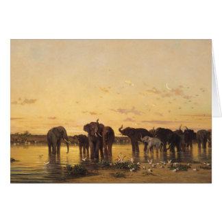 African Elephants Card