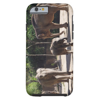 African Elephants Tough iPhone 6 Case