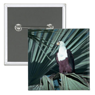 African Fish Eagle 15 Cm Square Badge