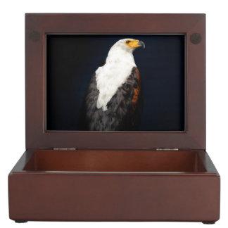African fish eagle keepsake box