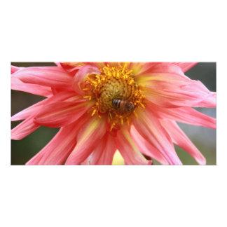 African Flower 04 Custom Photo Card