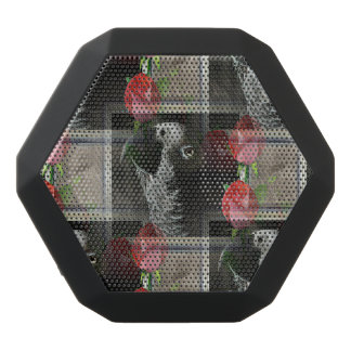 African Grey and Geometric Red Roses Black Boombot Rex Bluetooth Speaker