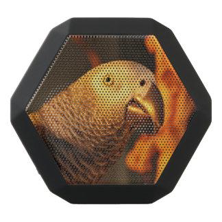 African Grey Gold Sunset Black Boombot Rex Bluetooth Speaker