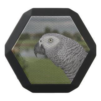 African Grey Lakeside Black Boombot Rex Bluetooth Speaker