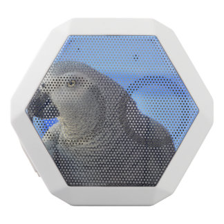 African Grey Parrot White Boombot Rex Bluetooth Speaker
