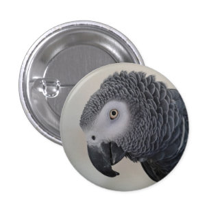 African Grey Parrot Button / Badge