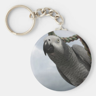 African Grey Parrot Close-up Key Chain