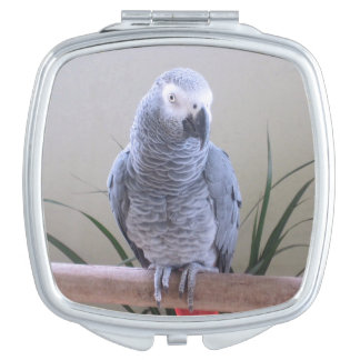 African Grey Parrot Travel Mirror
