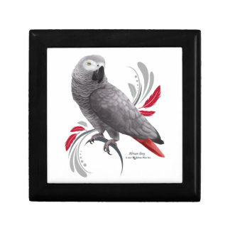 African Grey Parrot Gift Box