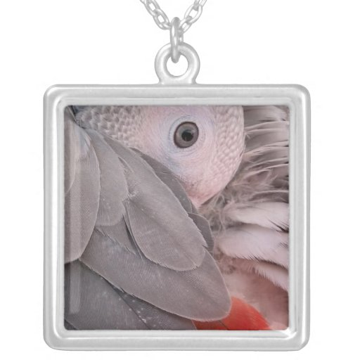 African Grey Parrot Large Silver Plated Necklace