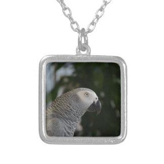 African Grey Parrot Custom Jewelry