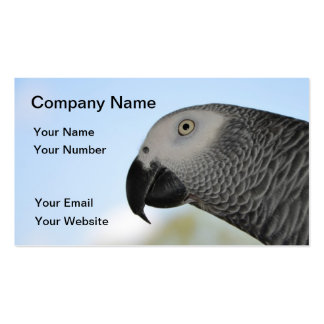 African Grey Parrot Pack Of Standard Business Cards