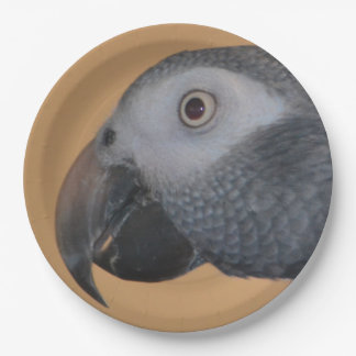 African Grey Parrot Paper Plates 9 Inch Paper Plate