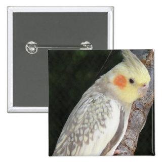 African Grey Parrot Pin