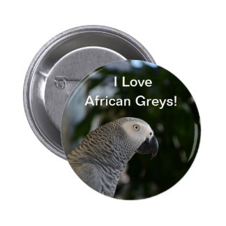 African Grey Parrot Pinback Buttons