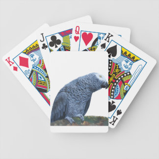 African Grey Parrot Playing Cards