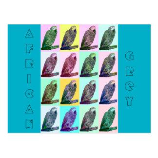 African Grey Parrot Pop Art Postcard