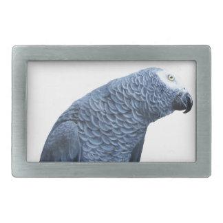 African Grey parrot portrait Belt Buckle
