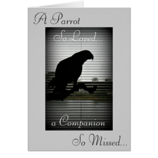 African Grey Parrot Silhouette Sympathy Greeting Card