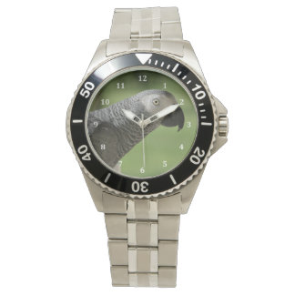 African Grey Parrot Watches