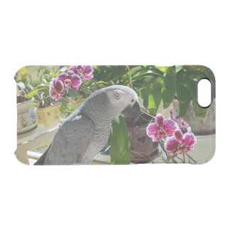 African Grey Parrot with Orchids Clear iPhone 6/6S Case