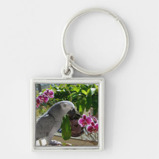 African Grey Parrot with Orchids Silver-Colored Square Key Ring